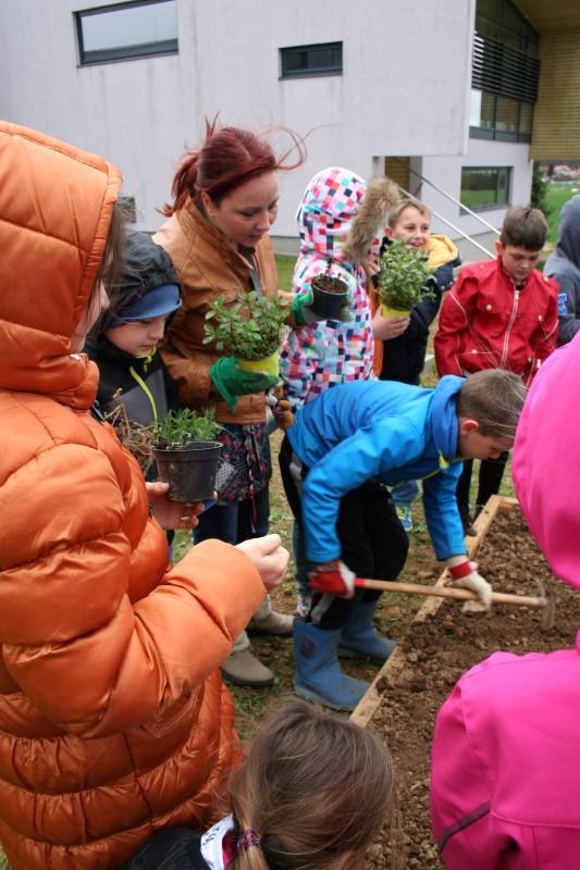 comenius-zasaditev-vrta-04.JPG